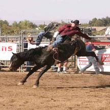 Honeycutt Rodeo Company